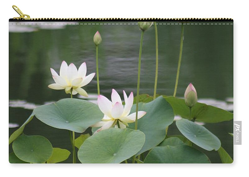 Lotus Carry-all Pouch featuring the photograph Lotus Patch by Christiane Schulze Art And Photography