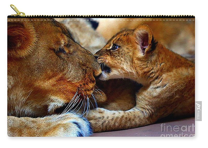 Lion Mother And Cub Carry-all Pouch featuring the photograph Love Bite by Elizabeth Winter