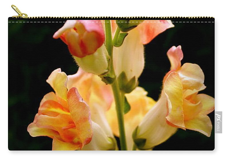 Yellow Carry-all Pouch featuring the photograph Lovely In Yellow by Sherri Williams