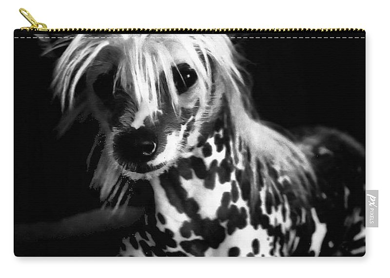 Dogs Carry-all Pouch featuring the photograph Lover Boy by Robert McCubbin