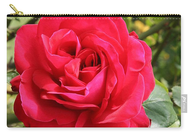 Rose Carry-all Pouch featuring the photograph Lovely Red Rose by Christiane Schulze Art And Photography