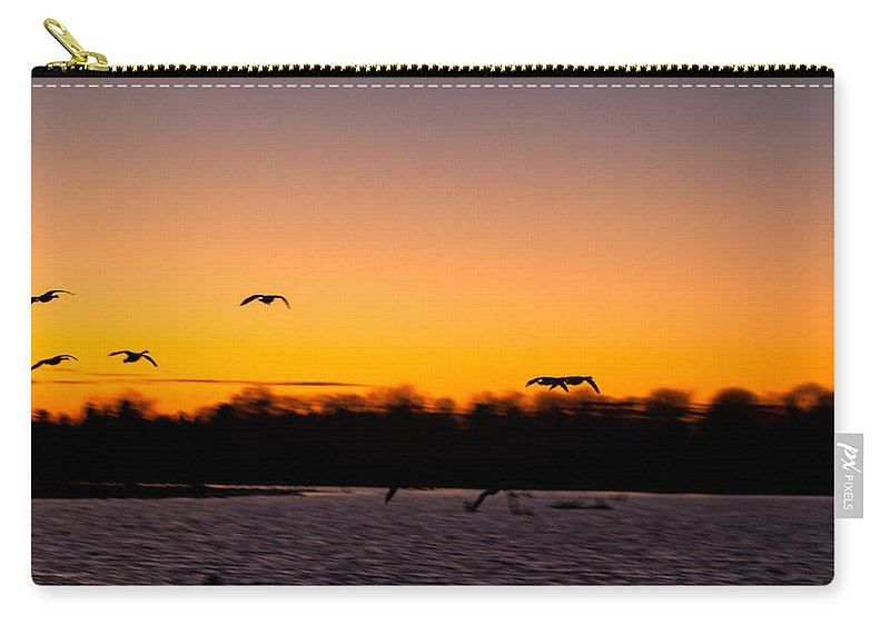 Goose Carry-all Pouch featuring the photograph Low Flyby by Thomas Sellberg