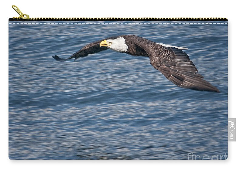 Eagles Carry-all Pouch featuring the photograph Low Flying by Claudia Kuhn