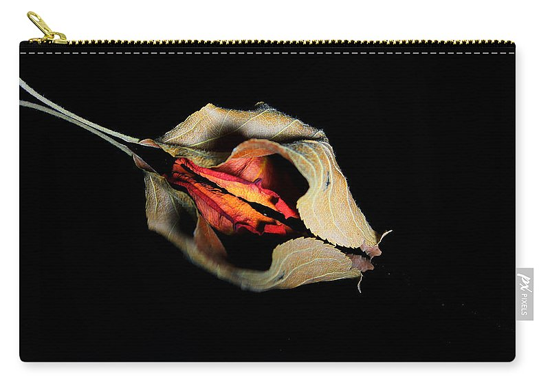 Rose Carry-all Pouch featuring the photograph Lr 001 by Dawn Marshall