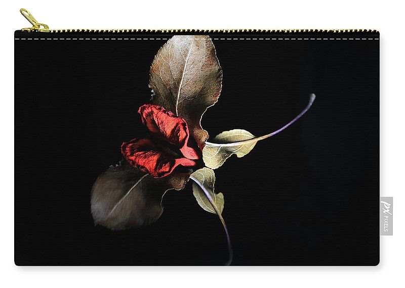 Rose Carry-all Pouch featuring the photograph Lr 002 by Dawn Marshall