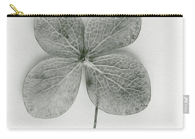 Four-leaf; Clover; Green; Leaf; Luck; Lucky; Plant; Superstition; Symbolic; Symbol; Charm; Fortune; Good Luck; Ireland; Irish; Shamrock Carry-all Pouch featuring the photograph Luck by Margie Hurwich