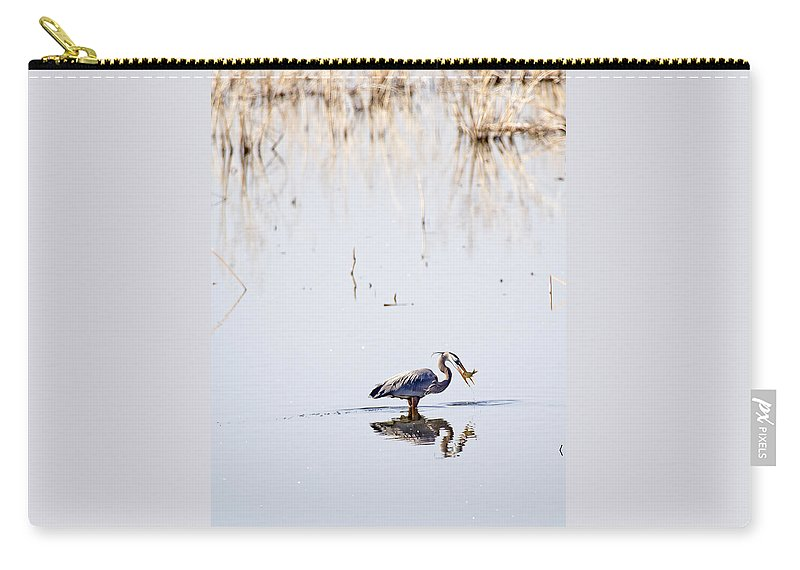 Blue Heron Carry-all Pouch featuring the photograph Lunch Time by Deb Buchanan