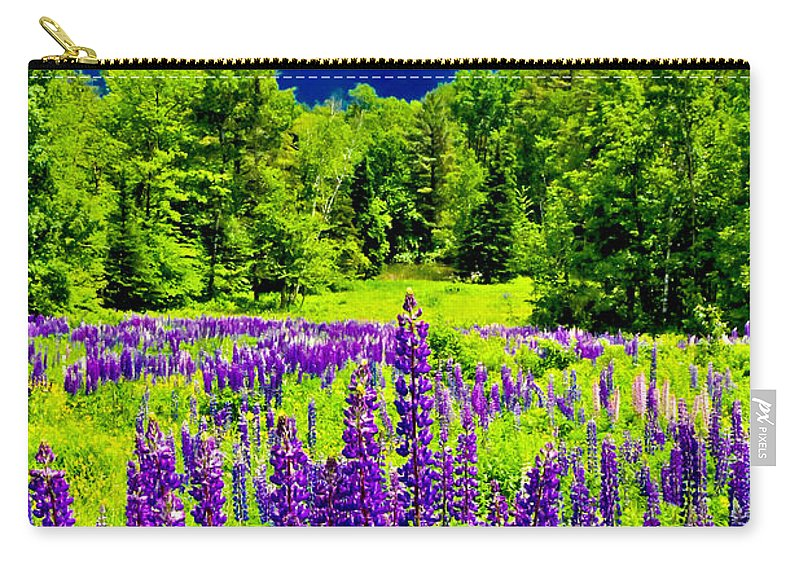 Crawford Notch Carry-all Pouch featuring the photograph Lupines Light by Greg Fortier
