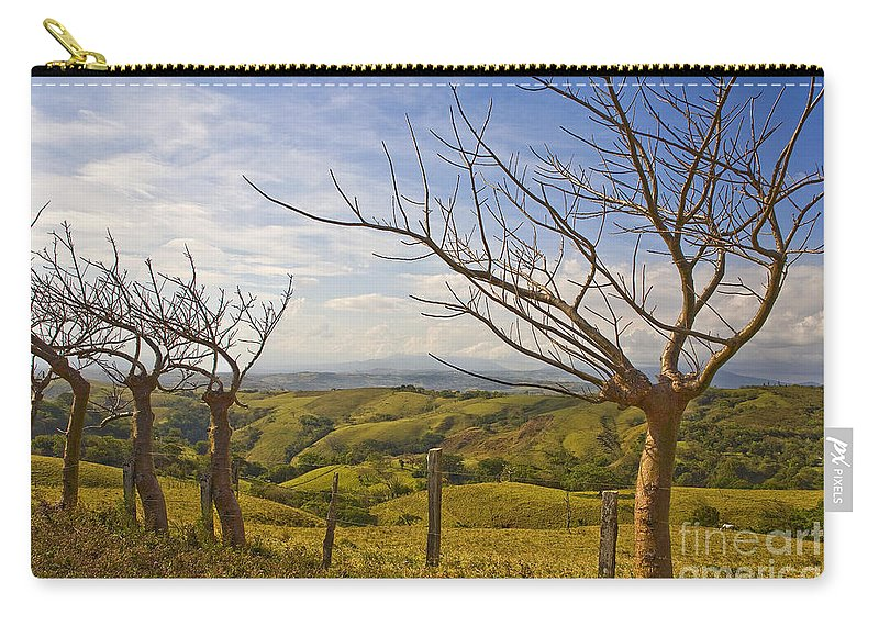 Landscape Carry-all Pouch featuring the photograph Lush Land Leafless Trees 2 by Madeline Ellis