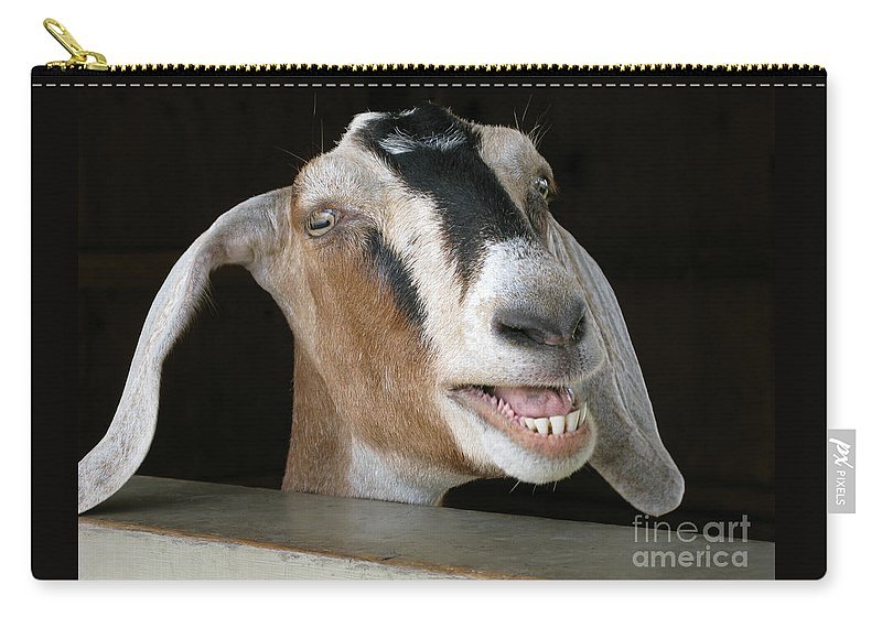 Goat Carry-all Pouch featuring the photograph Maa-aaa by Ann Horn