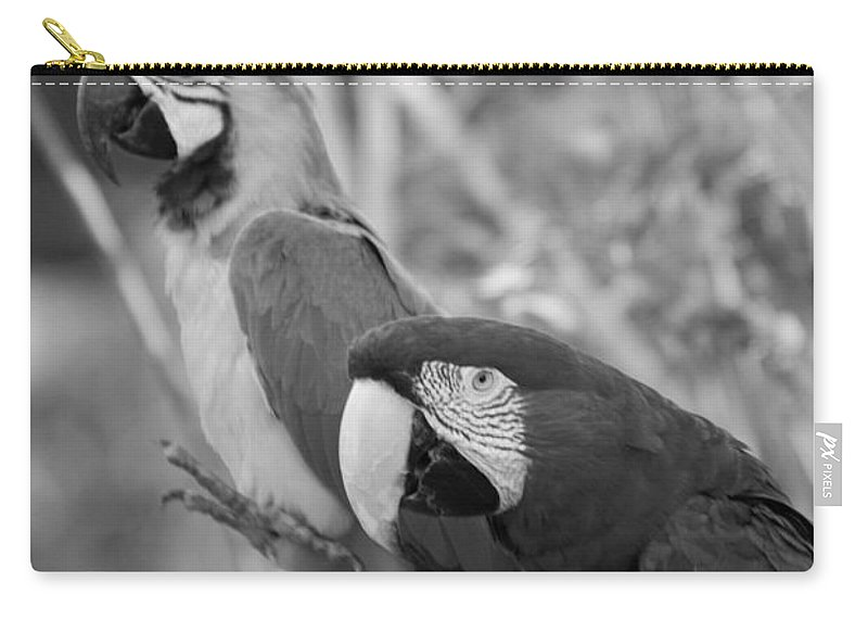 Macaws Carry-all Pouch featuring the photograph Macaws Of Color B W 14 by Rob Hans