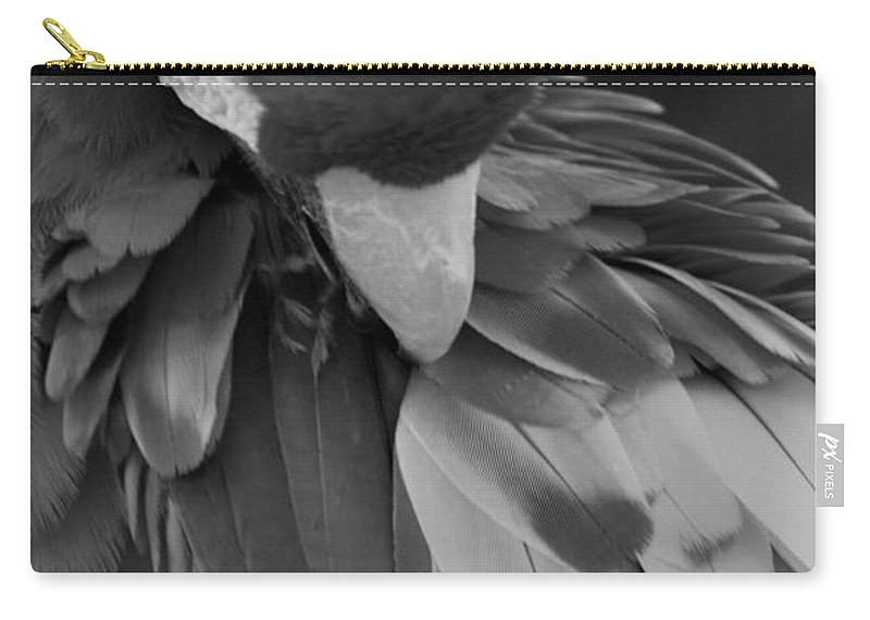 Macaws Carry-all Pouch featuring the photograph Macaws Of Color B W 16 by Rob Hans