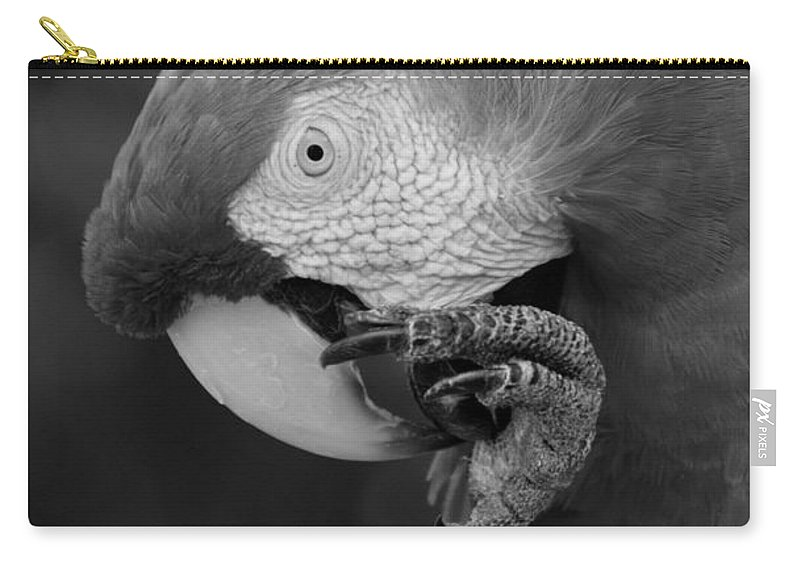Macaws Carry-all Pouch featuring the photograph Macaws Of Color B W 18 by Rob Hans