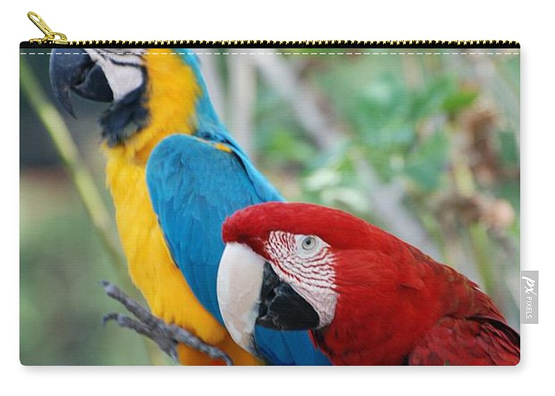 Macaws Carry-all Pouch featuring the photograph Macaws Of Color23 by Rob Hans