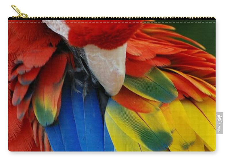 Macaws Carry-all Pouch featuring the photograph Macaws Of Color25 by Rob Hans