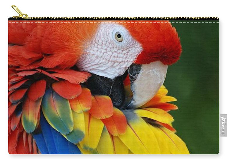 Macaws Carry-all Pouch featuring the photograph Macaws Of Color28 by Rob Hans