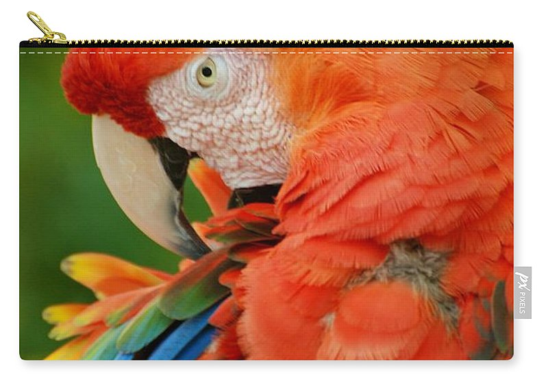Macaws Carry-all Pouch featuring the photograph Macaws Of Color29 by Rob Hans