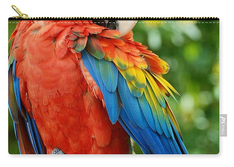 Macaws Carry-all Pouch featuring the photograph Macaws Of Color31 by Rob Hans
