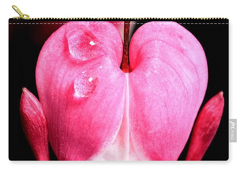 Macro Carry-all Pouch featuring the photograph Macro Bleeding Heart by Mark Duffy
