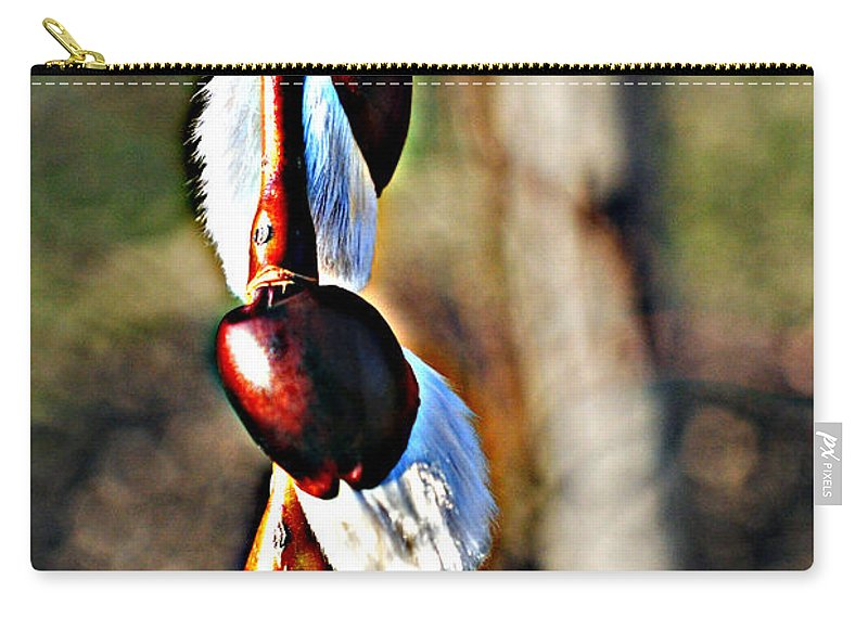 Hdr Carry-all Pouch featuring the photograph Macro Hdr by Frozen in Time Fine Art Photography