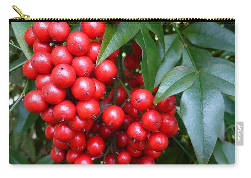 Macro Carry-all Pouch featuring the photograph Macro Holly Bush by Joseph Baril