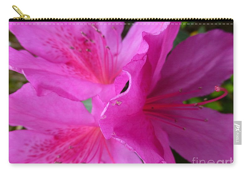 Macro Carry-all Pouch featuring the photograph Macro Purple Azalea Flower by Joseph Baril