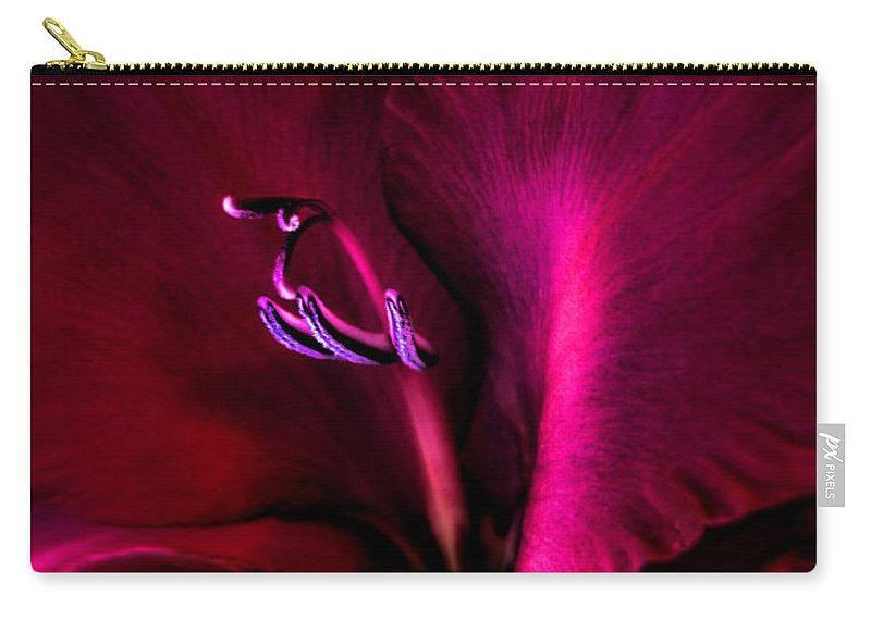 Gladiola Carry-all Pouch featuring the photograph Magenta Gladiola Flower by Jennie Marie Schell