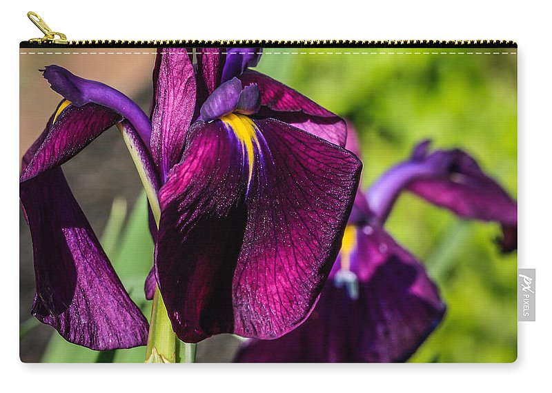 Maine Carry-all Pouch featuring the photograph Magenta Iris by Jane Luxton