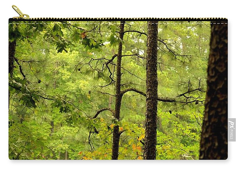 Magic Of The Golden Forest Carry-all Pouch featuring the photograph Magic Of The Golden Forest by Maria Urso