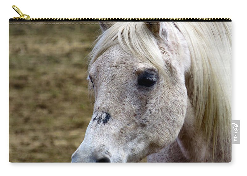 Horse Carry-all Pouch featuring the photograph Magical Beauty by Art Dingo