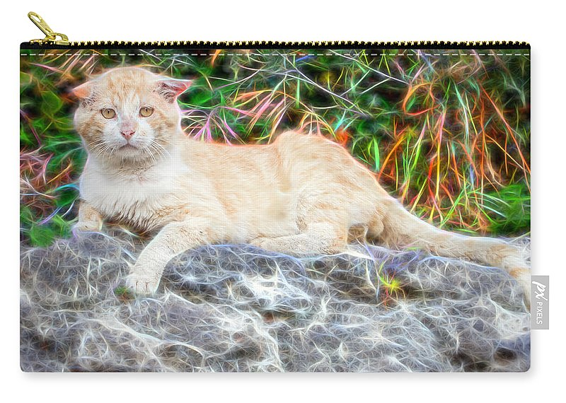 Alley Carry-all Pouch featuring the digital art Magical Cat by Roy Pedersen