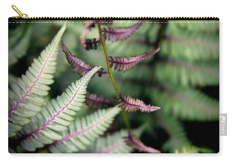 Rain Forest Carry-all Pouch featuring the photograph Magical Forest 3 by Karen Wiles