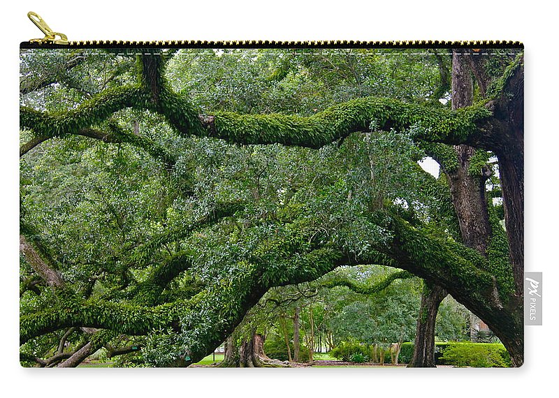Oak Alley Carry-all Pouch featuring the photograph Magnificent Oak Alley Tree by Denise Mazzocco