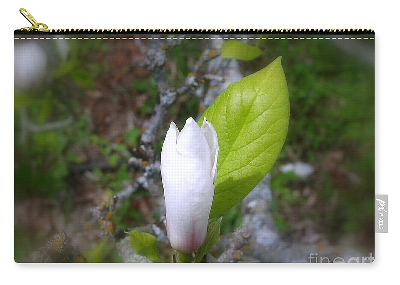 Magnolia Carry-all Pouch featuring the photograph Magnolia Bloom by Leone Lund