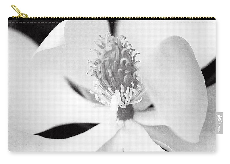 Magnolia Blossom Carry-all Pouch featuring the photograph Magnolia Blossom 1 Black And White by Dan Wells