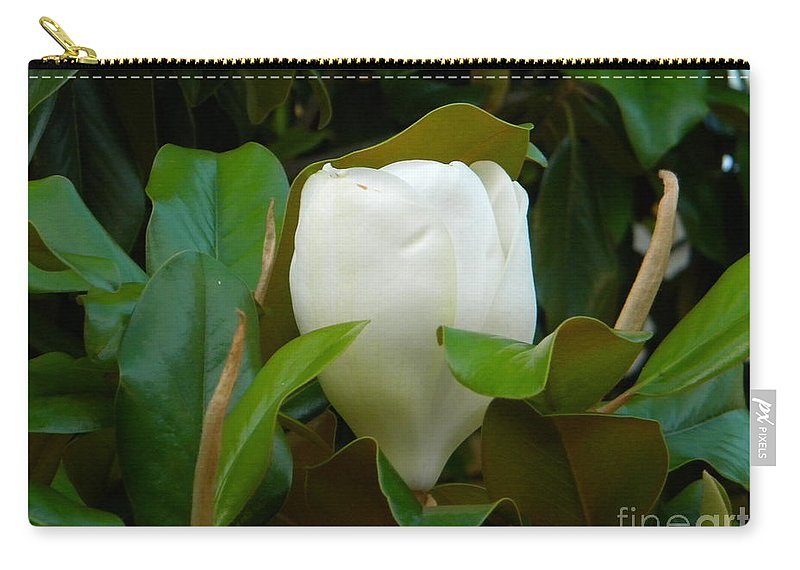 Magnolia Carry-all Pouch featuring the photograph Magnolia Blossom by Nathanael Smith