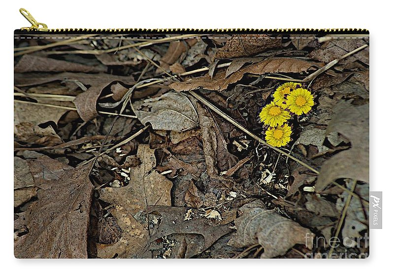 Finger Lakes Carry-all Pouch featuring the photograph Mailbox by Joseph Yarbrough