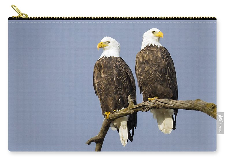 Eagle Carry-all Pouch featuring the photograph Majestic Beauty 6 by David Lester