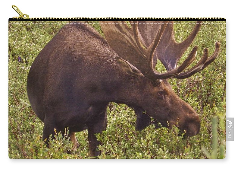 Moose Carry-all Pouch featuring the photograph Majesty by Tonya Hance