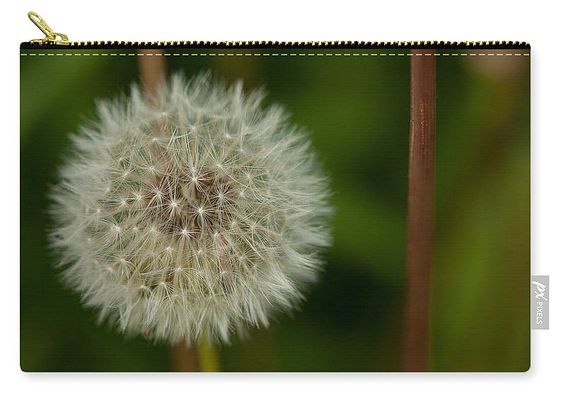 Make A Wish Carry-all Pouch featuring the photograph Make A Wish by Karol Livote