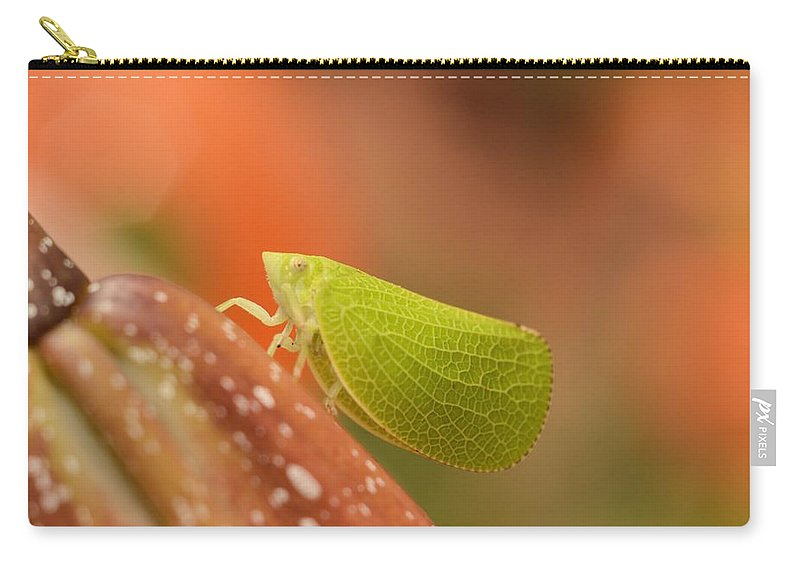Leaf Carry-all Pouch featuring the photograph Making Like A Leaf by Bonfire Photography