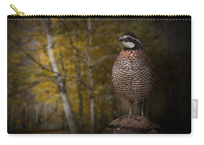 Art Carry-all Pouch featuring the photograph Male Bobwhite Quail by Randall Nyhof
