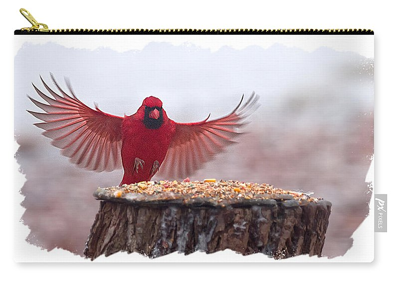 Male Cardinal Carry-all Pouch featuring the photograph Male Cardinal Landing by Randall Branham