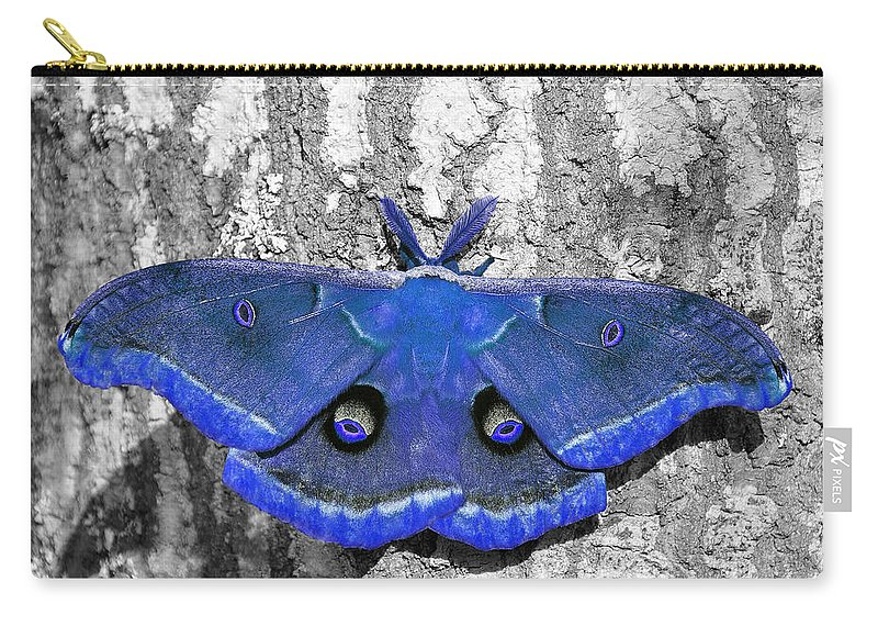 Moth Carry-all Pouch featuring the photograph Male Moth - Brilliant Blue by Al Powell Photography USA
