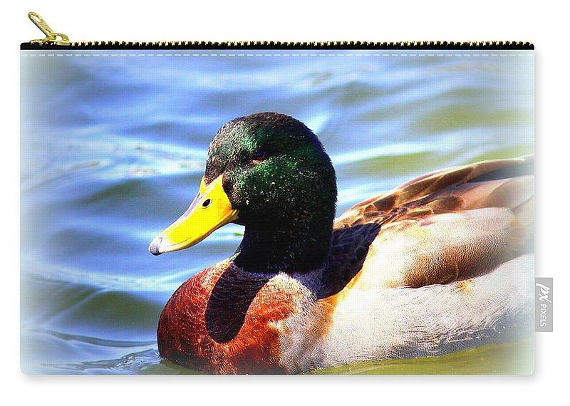 Mallard Carry-all Pouch featuring the photograph Mallard - 3000-l-012- by Travis Truelove