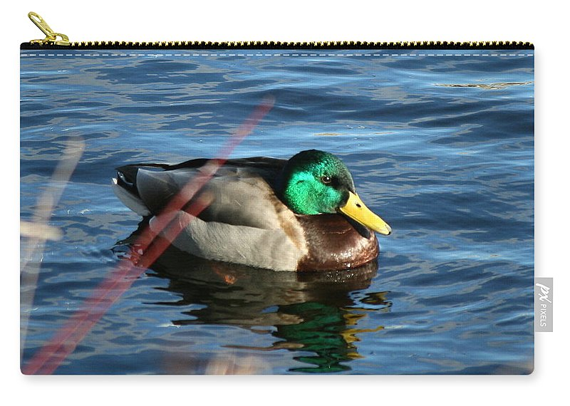 Mallard Carry-all Pouch featuring the photograph Mallard Drake Passing by Neal Eslinger