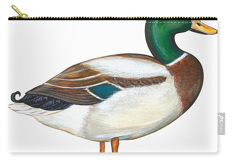 No People; Horizontal; Side View; Full Length; White Background; One Animal; Wildlife; Close Up; Zoology; Illustration And Painting; Bird; Beak; Feather; Web; Animal Pattern; Colorful; Mallard Duck; Anas Platyrhynchos Carry-all Pouch featuring the painting Mallard Duck by Anonymous