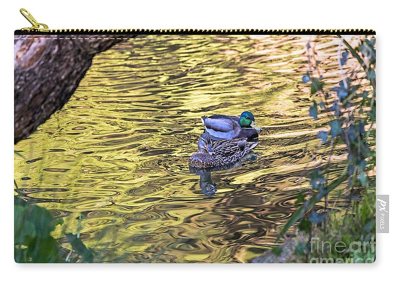 Anas Platyrhynchos Carry-all Pouch featuring the photograph Mallard Pair by Kate Brown