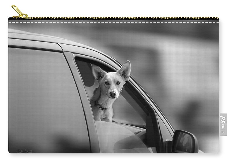 Dog Carry-all Pouch featuring the photograph Mans Best Friend Riding Shotgun by Bob Orsillo