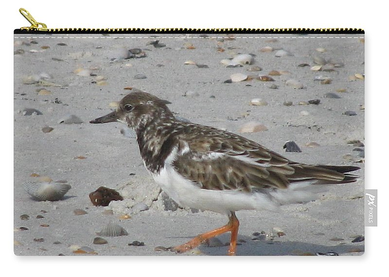 Landscape Carry-all Pouch featuring the photograph Marching Ruddy by Ellen Meakin